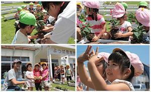[写真]2014年によつば保育園で実施した植苗活動の様子