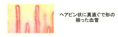 news1025_03