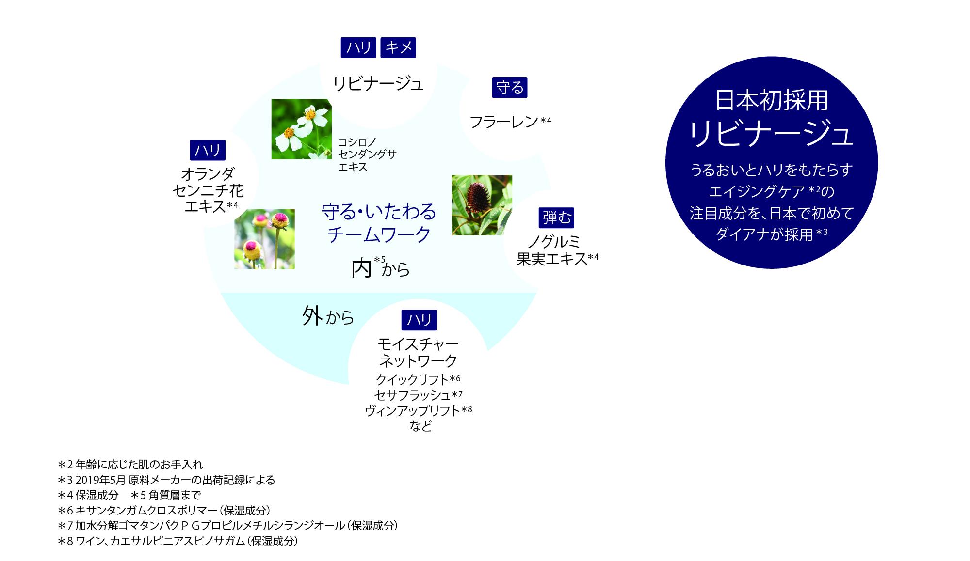 上向き美女シリーズ(アグレス内容)